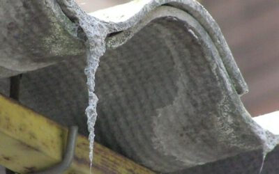 Asbestos y amianto